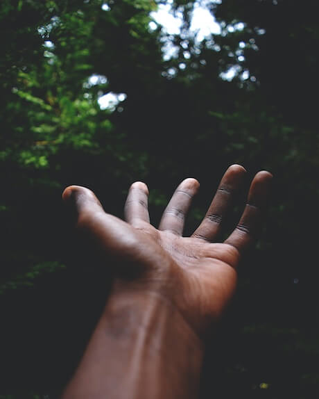 hands-approaching-to-touch-a-tree-in-the-forrest
